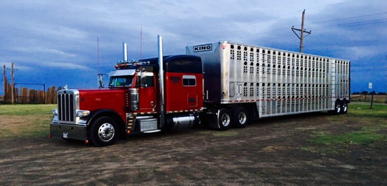 Dee King Trucking | Truckers Review Jobs, Pay, Home Time