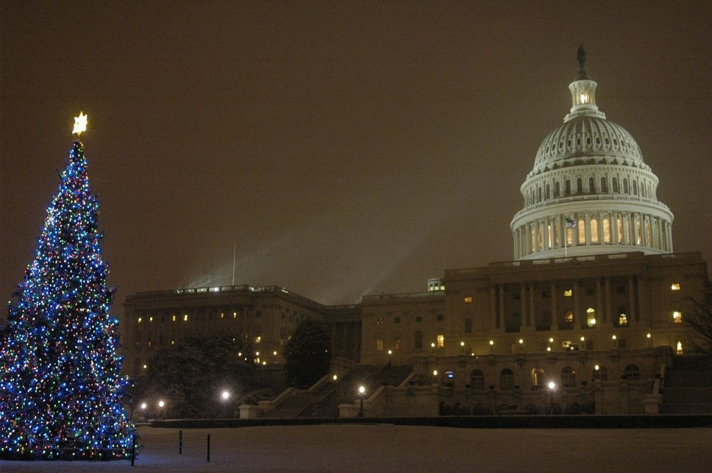 Capital Christmas Tree Heads To Washington Spreading Cheer… And FMCSA Safety Lessons